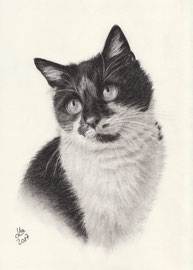 """my """"Lisa"""", charcoal, 20 x 30 cm, own reference"""