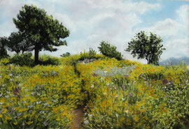 Meadow in summer, pastel on pastelmat, 24 x 35 cm, reference photo Michael Moore , pixabay