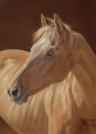 """Rio Sinigo"", Thoroughbred, pastel on pastelmat, 28 x 39 cm, commission; Ref. photo courtesy of Christiane Slawik"