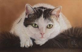 """""""Ilse"""", pastel on pastelmat, 19 x 30 cm, commission"""
