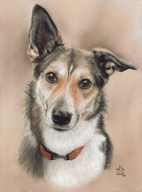 """Maja"", pastel on pastelmat, 21 x 29 cm, commission"
