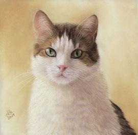 """""""Paul"""", pastel on pastelmat,  21 x 21 cm, commission"""