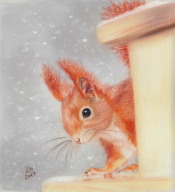 squirrel, pastel on pastelmat, 15 x 20 cm, reference photo Hörnchenpower, Fotocommunity; SOLD