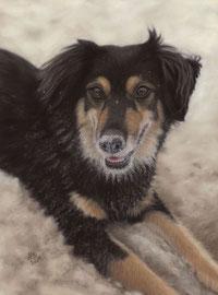"""Nadina"", pastel on pastelmat, 29 x 39 cm, commission"