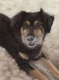 """Nadina"", pastel on pastelmat, 29 x 39 cm, commission"