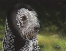 """Kurt"", pastel on pastelmat, 20 x 26 cm, commission"