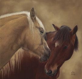 """""""Milo + Cali"""", pastel on pastelmat, 30 x 30 cm, commission"""