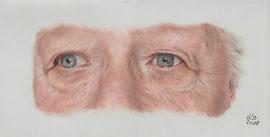 """""""blue eyes"""", pastel on pastelmat, 18 x 35 cm"""