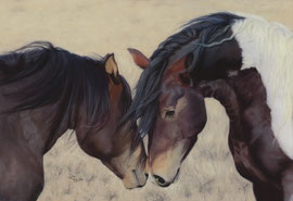 "Mustangs (wild horses), pastel on pastelmat, 27 x 39 cm, reference photo ""Steppinstars"", pixabay; SOLD"
