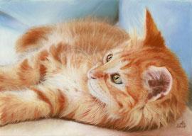 pastel on pastelmat, 20 x 29 cm, reference photo Melanie Bellgardt; SOLD!