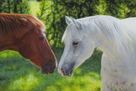 """BJ + Dally"", Quarter Horses, pastel on pastelmat, 40 x 60 cm, reference photo Karen Broemmelsick"