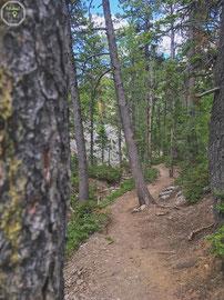 Wunderschöner Hike in den Spring Mountains