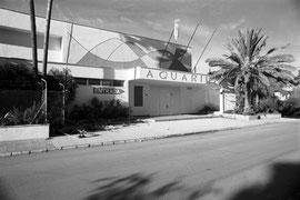 Aquarium of Portocristo (Mallorca, Spain. 2009)