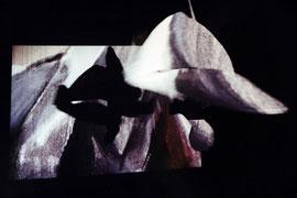 Isola, Austrian Cultural Forum Rome, 1994. detail