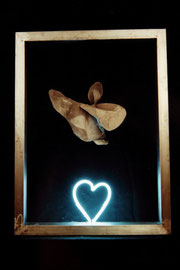Verlorenes Herz - lost heart, 1993. free hanging and moving plastique, steel, modelled neonlight. 70x50x25 cm. public collection.