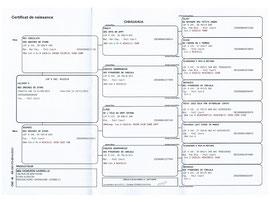 Certificat de naissance