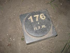 Высотная отметка на Ореховой горе – 176 метров над уровнем моря