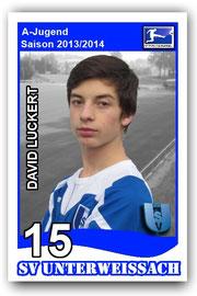 15 David Luckert
