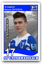 17 Stefan Nesic