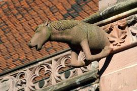 Wasserspeier am Freiburger Münster