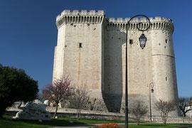 Burg von Tarascon