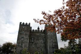 Irland - Bunratty