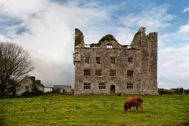 Irland - Impressionen
