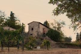 Impressionen Toskana
