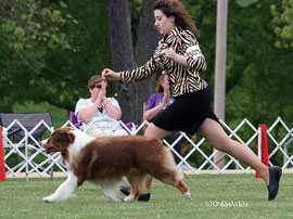 HOF CH.Bayoulands Creme Brulee - Sire of our 4th Litter
