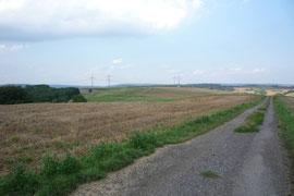 Über diese Felder würde die zukünftige zweite Werkszufahrt wohl führen.