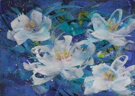 Blüten weiß 1 | 100 x 140 cm