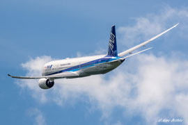 Boeing 787-900 Dreamliner - All Nippon Airways (ANA)