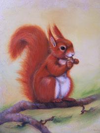 Eichhörnchen 50 x 60 cm