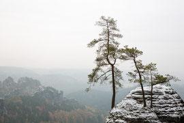 erster Schnee auf der Bastei