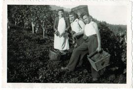 Weinlese Goldwand 1947, in der Mitte Bruno Wetzel mit Mutter Frieda und Bruder Otto