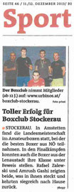 boxclub stockerau presse