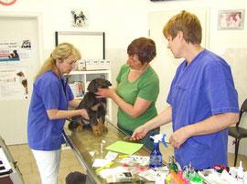 Die Tierärztin und ihre Assistentin waren ganz lieb zu uns.