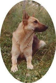 Maya née en 1976