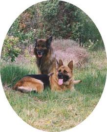 Melba  et  Junior