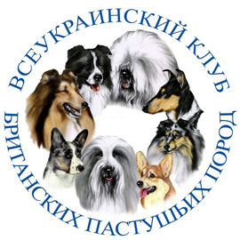 Всеукраинский Клуб Британских Пастушьих Пород