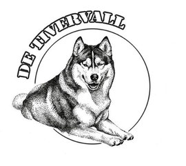 "Питомник хаски ""De Tivervall"""