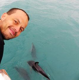 weltforscher-delfinschwimmen