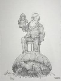 12. Februar- Internationaler Darwin-Tag - Zeichnung, Graphit 30 x 42