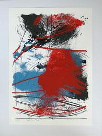 Z-8 Farbserigrafie von Peter Kuckei, signiert und datiert 99 sowie nummeriert 24/39; Blattmaß 68,5 x 48,5 cm - guter Zustand bis auf einen leichten Knick an der unteren linken Ecke, Preis = 115,-- EUR