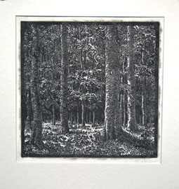 M-16  Waldlandschaft- Farblinoldruck in grau-schwarzen Tönen von Margarete Dreger, signiert, um 1920: Darstellungsgröße: 30x30 cm, Preis: 75,-- EUR