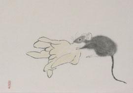 """1 - Le rat au cédrat dit """"main de bouddha"""""""