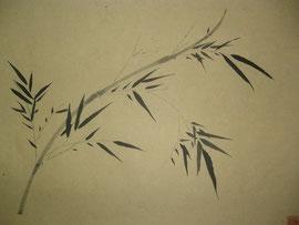 15 - bambou