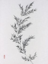 3 - Bambou sur papier chinois marouflé