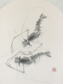 2 - Les crevettes