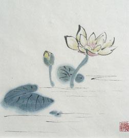 11 - Lotus